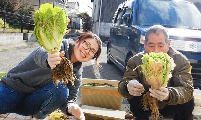 ゆうゆうの家 松永 野菜の収穫 写真